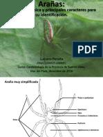Clase de Arañas (Luciano Peralta)