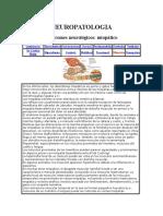 NEUROPATOLOGIAS_EN_PEQUENAS_ESPECIES.docx