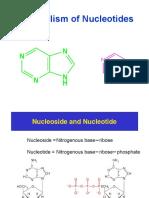 Purine Nucleotide