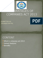 Advantages of Companies Act 2013