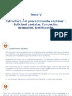Derecho Procesal Civil III - Tema V