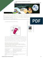Lenguaje y Comunicacion_ La Tilde Diacritica y Enfatica