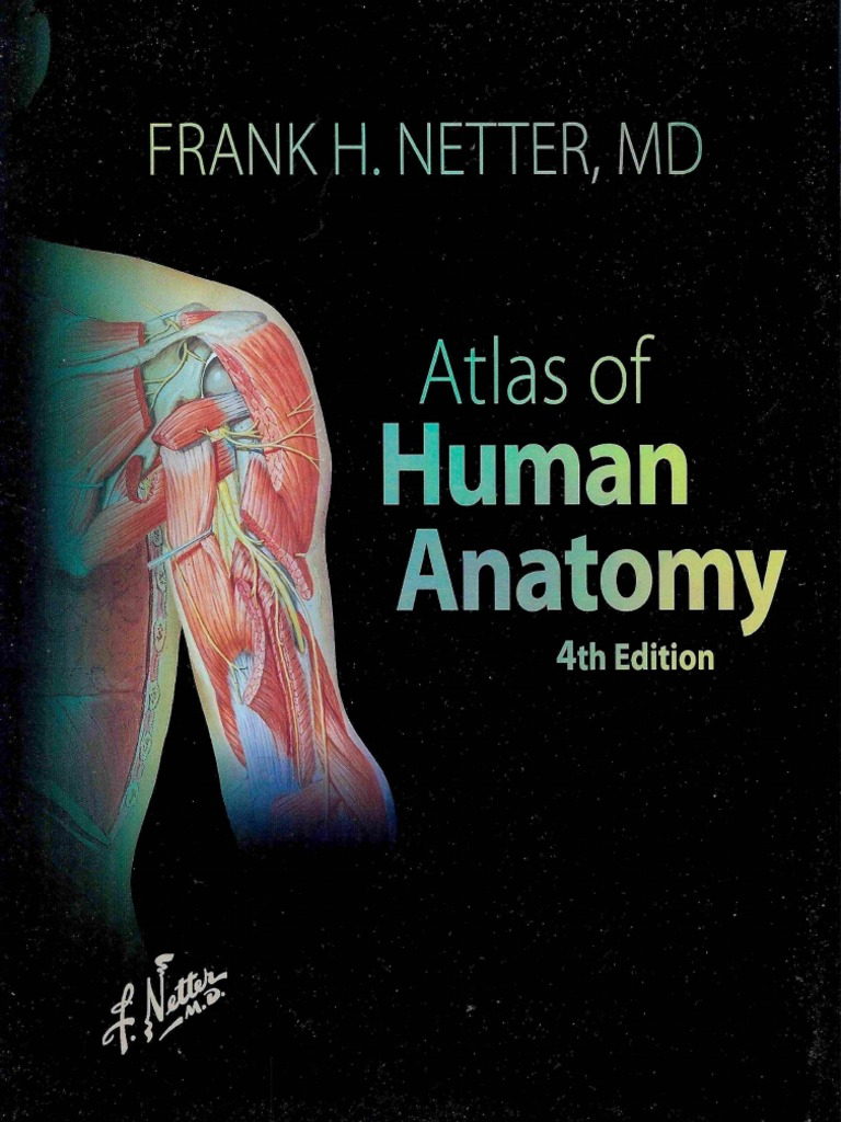 Atlas Of Human Anatomy By Frank Netter Pdf Periodic Diagrams Science
