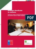 4  Estrategias diversificadas de enseñanza.pdf