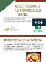 Matriz de Riesgos Frutas Tropicales Senc