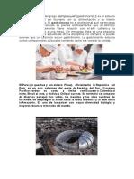 gastronomia peru.docx