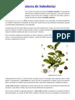 Chá Verde (Palavra de Sabedoria)