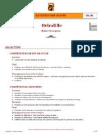 « Brindille », Remi Courgeon - séquence pédagogique CE1-CE2