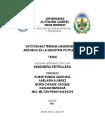 Estimulación y Recuperación Mejorada de Hidrocarburos Con Aplicación de Técnicas Meor.pdf-1118139258
