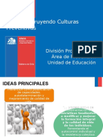 Culturas Preventivas 2014 (2)