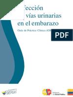 Guia_infeccion_v_u.pdf
