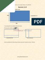Ejercicio-2.1.9_55c3834476a9c_e.pdf