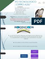 Equipo 6.PDF