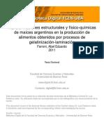 Tesis_Farroni.pdf