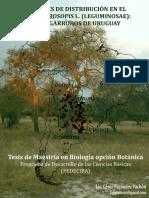 Tesis de César Fagúndez sobre los árboles del género Prosopis