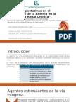 Cuidado Paliativo en El Paciente Con ERC KDIGO V