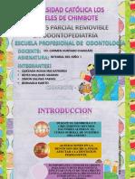 Ppr en Odp Integral Niño Expo