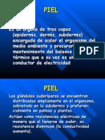 RESPUESTA GALVÁNICA DE PIEL