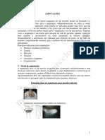 APOSTILA DE AMPUTAÇÃO 2012.pdf