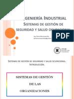 Seguridad, Higiene e Ing. Ambiental - Sistemas de Gestion de SeH - Rev2016.pdf