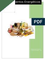 Informe Alimentos Energéticos