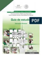 Guía - Primaria.pdf