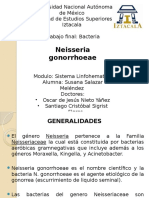 Neisseria Gonorrhoeae Grupo 2234