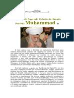 Sobre a Validade de Obter Bênçãos e Benefício Por Meio Do Cabelo Do Profeta
