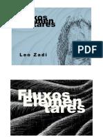 Fluxos Elementares - Leo Zadi