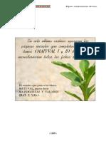 46 Paginas Complementarias Diversas. (p. 1169 a 1211)