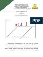 laporan pengawasan komisi 2.docx