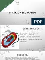 Struktur Sel Bakteri Tugas BioPPT