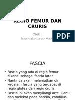 8. Regio Femur Dan Cruris