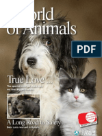 "IFAW ""World of Animals"" Magazine vol. 1 issue 4"