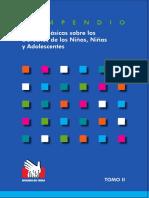 normas basicas sobre derechos del niño Tomo2.pdf