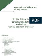 Congenital Development of Urinary System.ppt