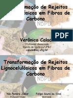 apresentacao_veronica_calado.pdf