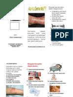 Leaflet Dermatitis Poltekkes