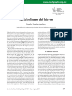 Metabolismo hierro.pdf