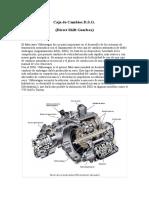 Caja de Cambios DSG - Pablo G.
