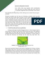 Prinsip Dan Cara Kerja Biomimetik, Biomimikri