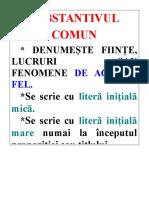 14-Substantivul comun