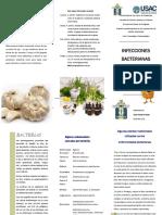 Trifoliar Antibacterianos Toxi O Sacahuí