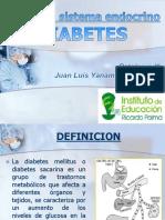 Semana 02 - Diabetes Mellitus