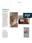 newsletter pdf all about ivy