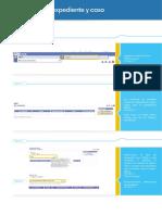 49_PROFESIONAL_DECE_Creacion_de_Expediente_y_Caso.pdf