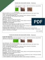 Ficha de Estudo Texturas Educação Visual