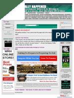 FAKE TERROR whatreallyhappened-com.pdf