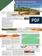 fertilisation des agrumes.pdf