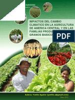 Impactos del cambio climático en la agricultura de América Central y en las familias productoras de granos básicos.